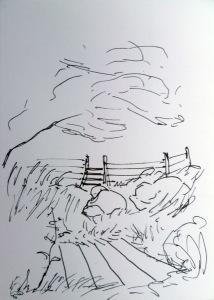 Über einen Steg erreicht man über große Steine die Weidentreppe, links steht ein Baum